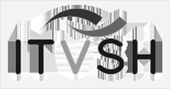 IT-Verbund Schleswig-Holstein (ITVSH)